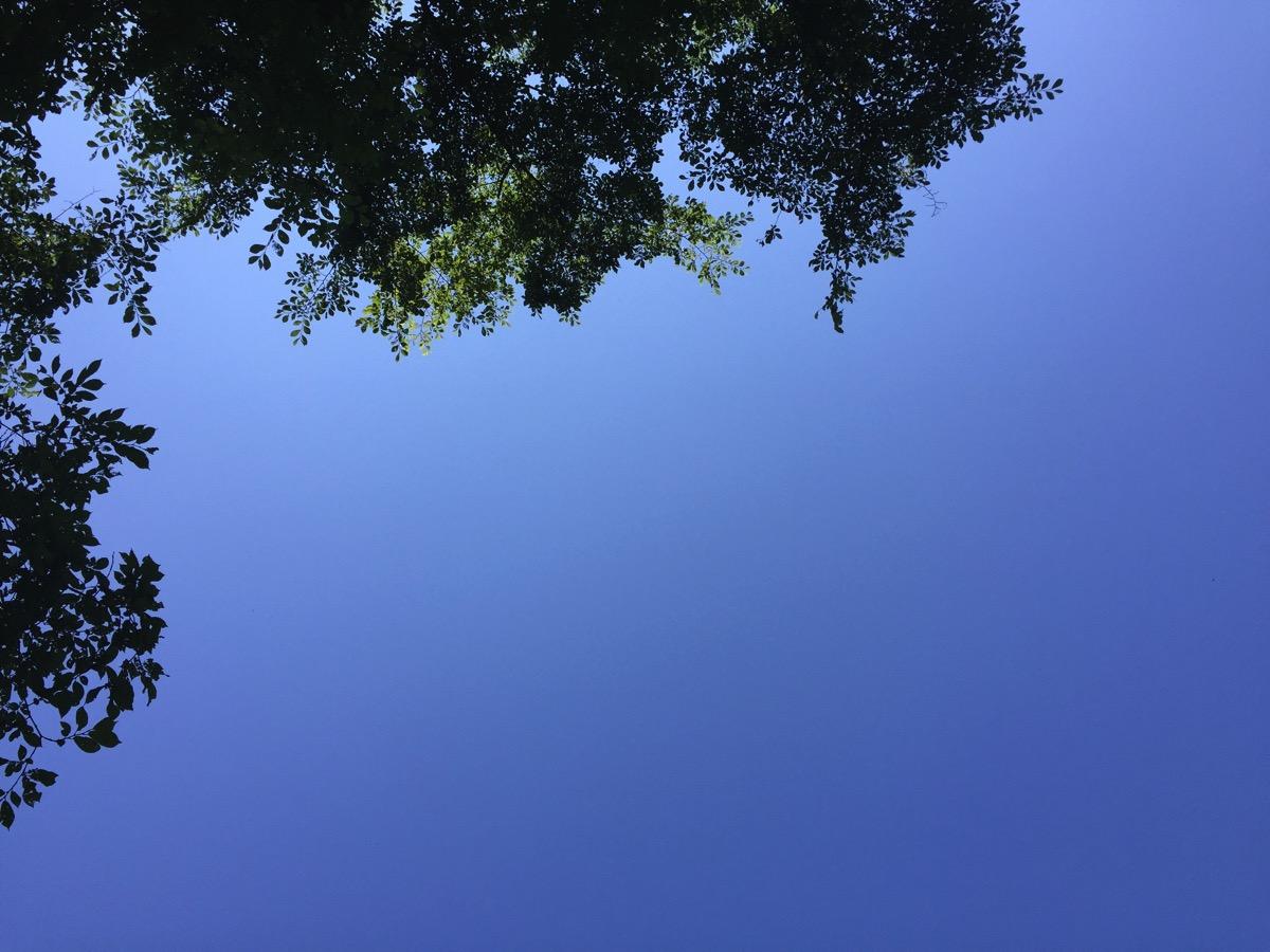 北広島市自然の森キャンプ場でやすらぐ休日