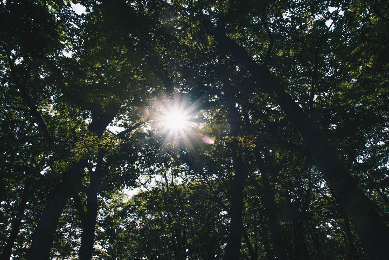 仲洞爺キャンプ場の景色が最高すぎて、またすぐにでも行きたい